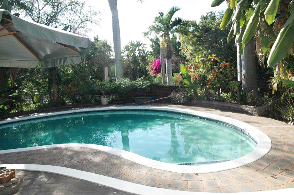 Elephant Walk Backpackers & Guest House Swimming Pool
